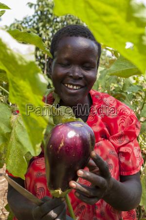 a female farmer harvests an aubergine