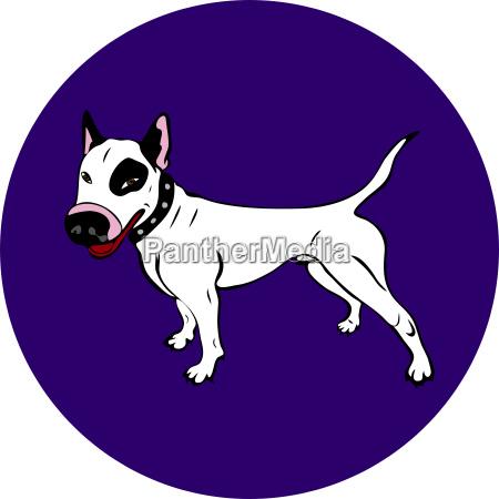 hand painted white english bull terrier